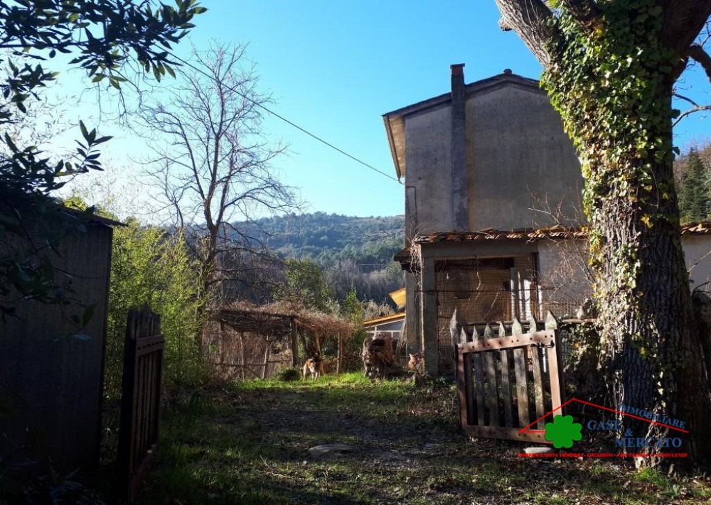 For Sale Cottages and Farmhouses Lucca - Beautiful country house for renovation with ample room in the Green Locality