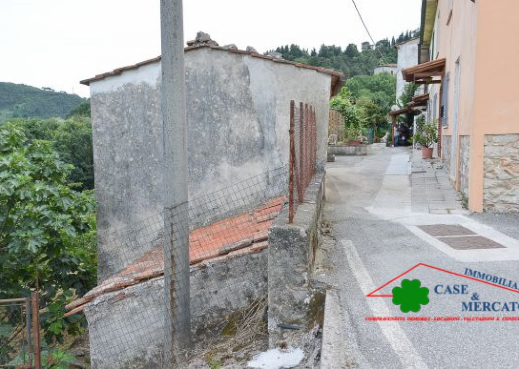 Sale Semi-Independent houses Lucca - Detached house with land and terraces in country area Locality